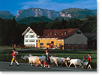 Appenzell, Switzerland (Click to Enlarge)